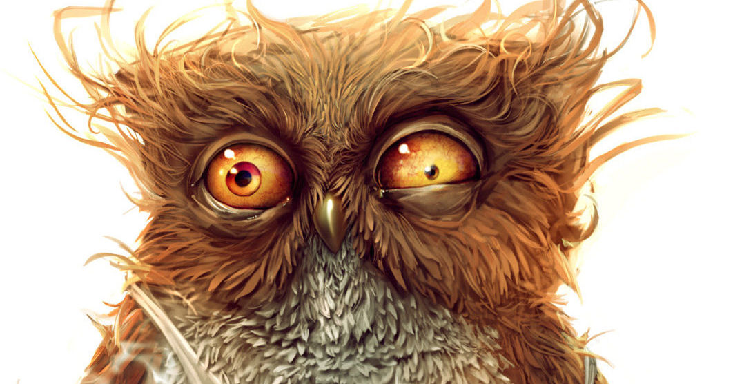 Frazzled looking owl; why meditate?