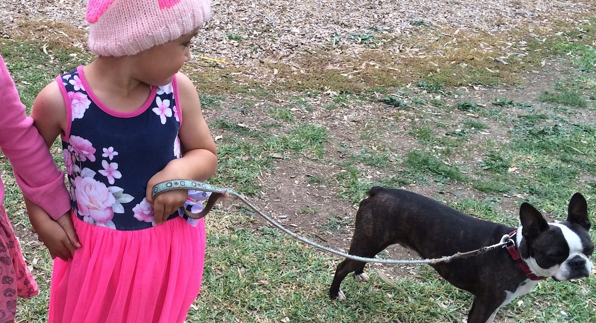 Boy in pink holding dog with leash